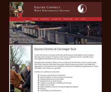 Equine Connect